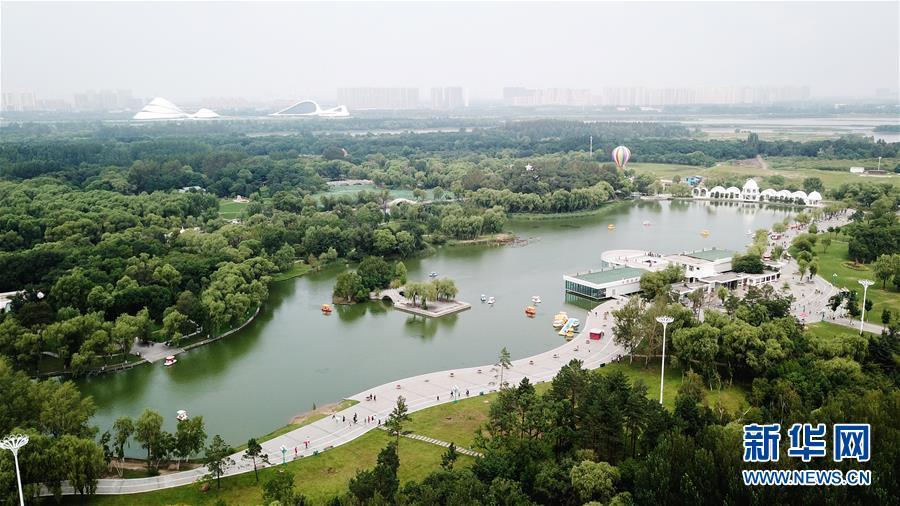 石家庄新华区风景绘画