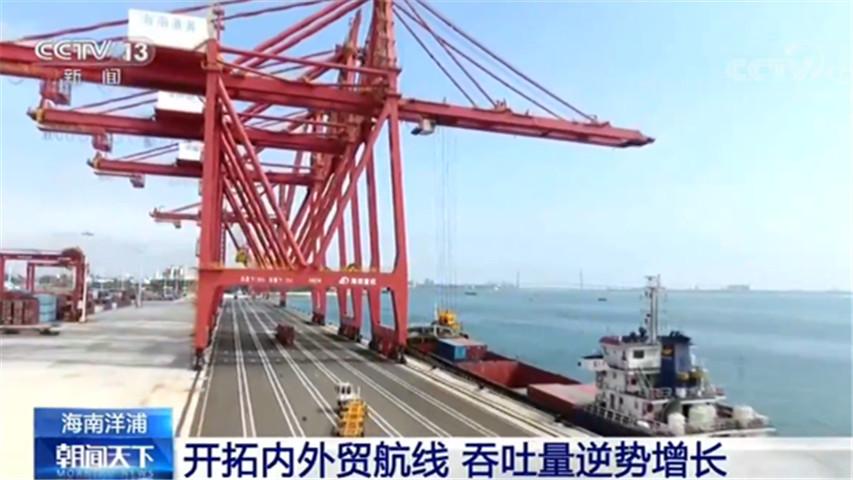 海南洋浦港口吞吐量1530.53万吨 同比增长4.23%